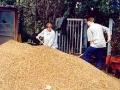 Dank der Hilfe zahlreicher Schüler wurden  in den Herbstferien  3 qm  Grob- u. 15 qm Feinkies vom Wirtschaftshof des Zoos  zum Wasserschulgarten transportiert.