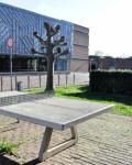 09-Hauptgebaeude-und-Schulhof